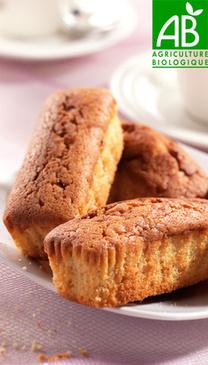 Mini Cakes Abricot Bio