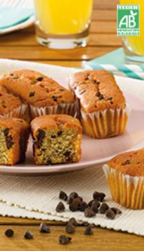 Minis Cakes pépites choco Bio