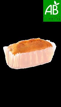 Mini cake aux fruits